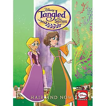 Tangled The Series  Hair and Now by Katie Cook & Illustrated by Eduard Petrovich & Illustrated by Rosa La Barbera & Illustrated by Diogo Saito & Illustrated by Monica Catalano