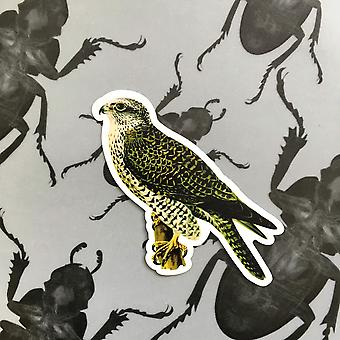Vintage Falcon Vinyl Sticker