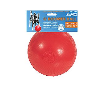 Company of Animals Boomer Ball, Dog Toy (6inch / 150mm) Red Colour