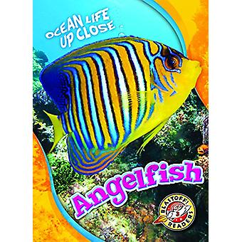 Angelfish by Nathan Sommer - 9781626177642 Book