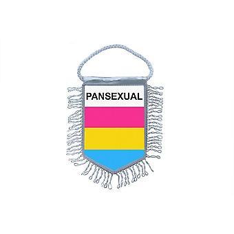Sinalizar mini bandeira país carro decoração pansexual Rainbow