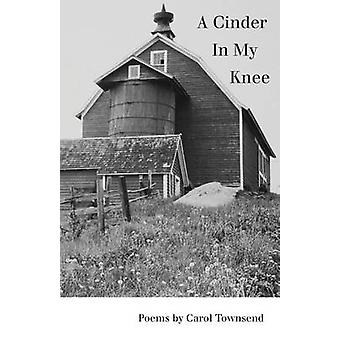 A Cinder In My Knee by Townsend & Carol