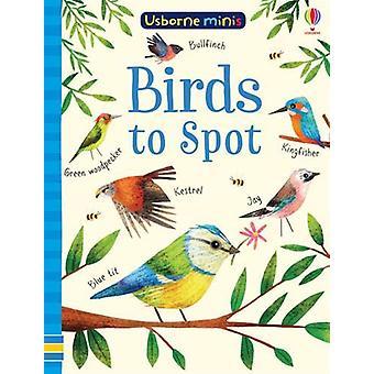 Birds to Spot by Sam Smith - 9781474952156 Book