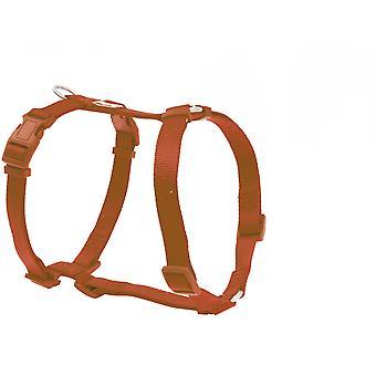 Freedog Basic Nylon utnyttja rött kakel (hundar, kragar, Leads och selar, seldon)