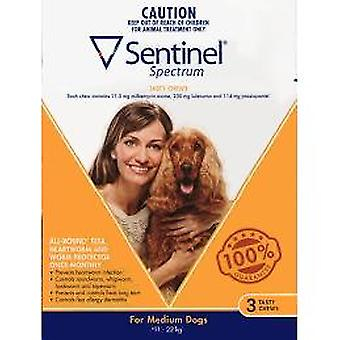 Sentinel Spectrum Dogs 11-22kg (25-50lbs)-3 chewables