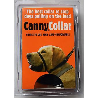 Canny Collar - Taille 6 - Noir