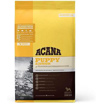 Acana Puppy and Junior Dog Food, 11.4 kg