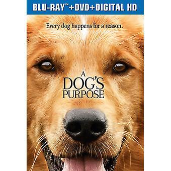 Dog's Purpose [Blu-ray] USA import