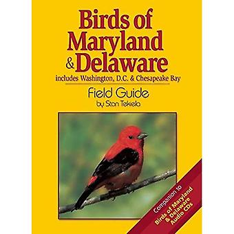 Birds of Maryland & Delaware Field Guide: Includes Washington DC & Chesapeake Bay