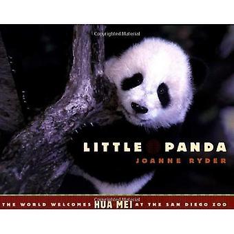 Lilla Panda: Världen välkomnar Hua Mei på San Diego Zoo