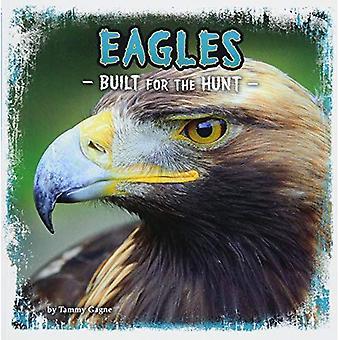 Adler: Gebaut für die Jagd (erste Fakten: Predator Profile)