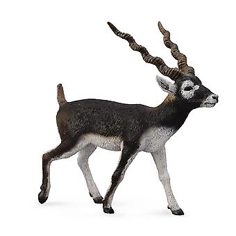 CollectA Blackbuck