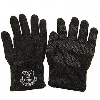 Everton FC Unisex Adults Luxury Touchscreen Gloves