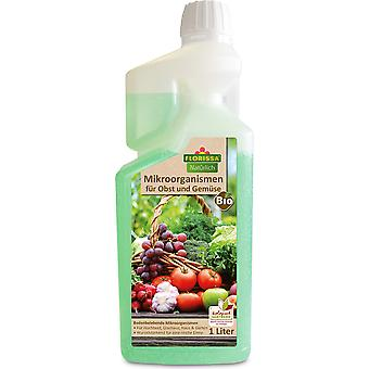 FLORISSA Microorganisms for fruit and vegetables, 1 litre