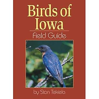 Birds of Iowa Field Guide (Guides de terrain)