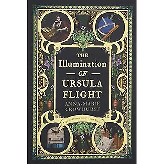 A iluminação do voo de Ursula