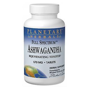 Planetary Herbals Full Spectrum Ashwaganda, 120 Tabs