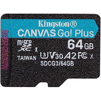 FengChun SDCG3/64GB SP microSD Speicherkarte ( 64GB microSDXC Canvas Go Plus 170R A2 U3 V30 Ohne SD