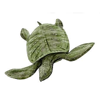 Archelon ischyros sköldpadda sent krita av USA affisch Skriv av Nobumichi TamuraStocktrek bilder