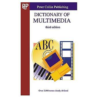 Dictionnaire du multimédia: plus de 3000 termes clairement définis (série professionnelle)