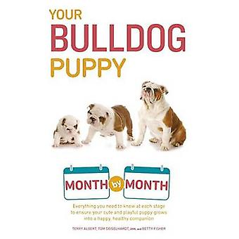 Your Bulldog Puppy Month by Month - Everything You Need to Know at Eac