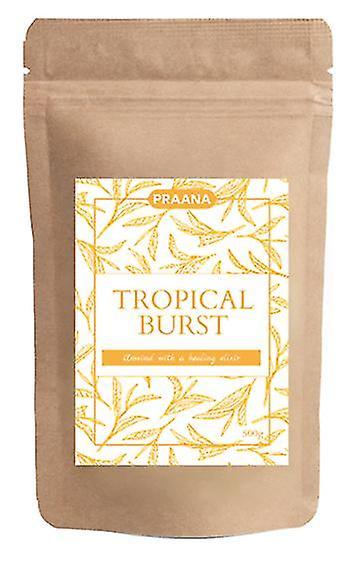 Praana Tea - Tropical Burst Fruit Infusion - Catering Pack 500g