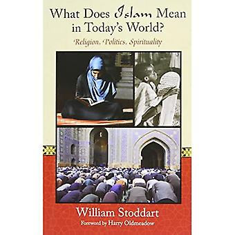 What Does Islam Mean In Today's World?: Religion, Politics & Spirituality (Perennial Philosophy)