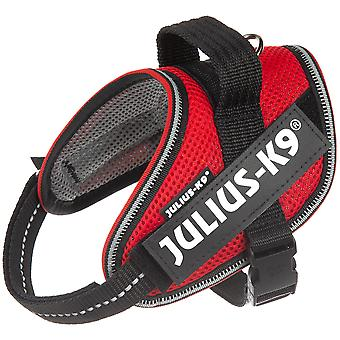 Julius K9 Powair Verano Arnés (Dogs , Collars, Leads and Harnesses , Harnesses)