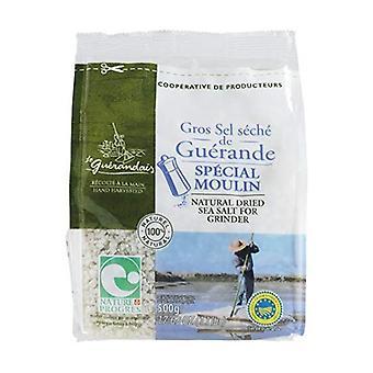 Coarse dried salt refill 500 g