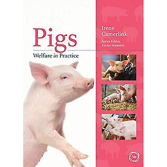 Pigs Welfare in Practice (Animal Welfare in Practice� Series)