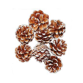 LAST FEW - 8 Frosted Tipped Pine Cones for Christmas Crafts