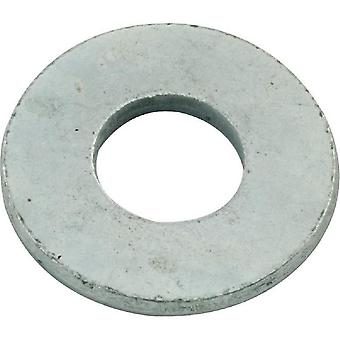 "Hayward ECX16415H 0.375"" Flat Washer"