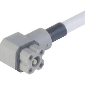 Hirschmann 931 805-602 G 4 KW 1 F 2 M kontakt för styrspänningen grå antal stift: 4