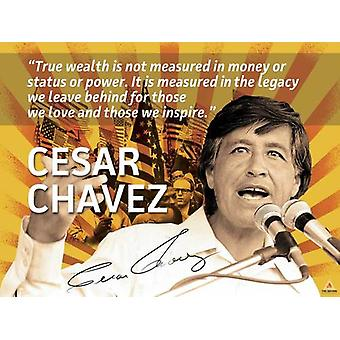Cesar Chavez Poster Quote Labor Activist Education Art Print (24x18)