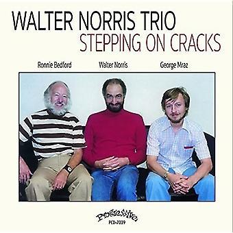 Stepping On Cracks [CD] USA import