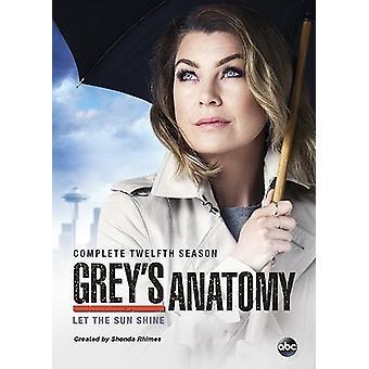 Grey Anatomy: importazione USA la dodicesima stagione completa [DVD]