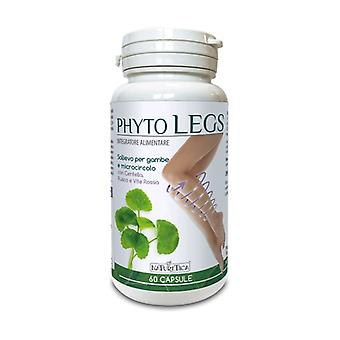 Phyto legs - relief for legs and microcirculation None