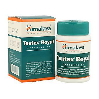 Tentex Royal 60 capsules