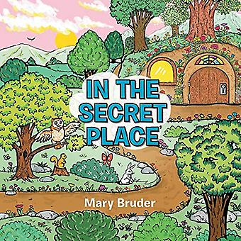 In the Secret Place by Mary Bruder - 9781462409327 Book