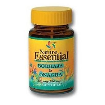 Nature Essential Borage och Kväll Primrose Olja 500 mg, 50 Pärlor