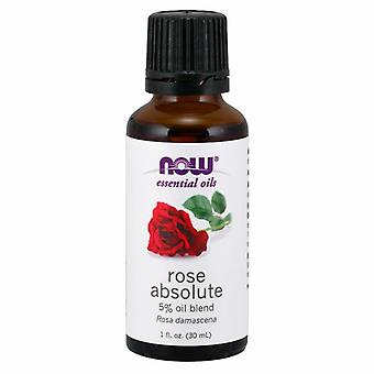 Now Foods Rose Absolute 5% Blend Oil, 1 oz