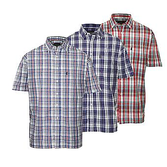Mestari miesten Beverley rento lyhythihainen paita (kpl pakkaus 3)