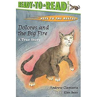 Langaton pelastus: Dolores ja suuri tulipalo: tositarina (Ready-to-Read - taso 1)