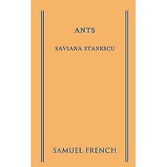 Ants by Stanescu & Saviana