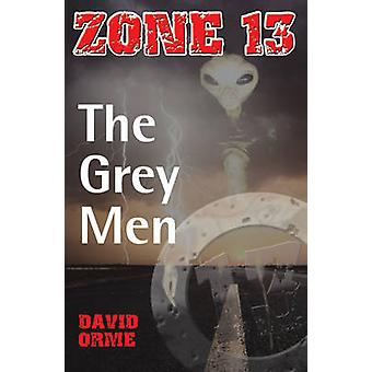 The Grey Men - Set One by David Orme - 9781841674551 Book