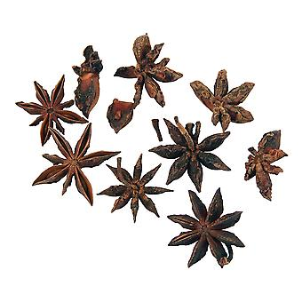 30g Dried Star Anise for Floristry & Wreath Making
