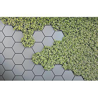 Jardim Vertical Verde 3D