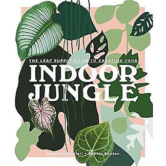 La guida all'approvvigionamento delle foglie per creare la tua giungla interna