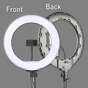 Lampe en direct de 36Cm avec la lampe conduite de support de boucle