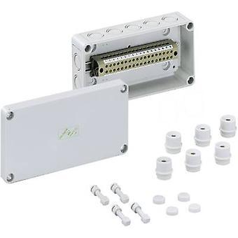 Spelsberg RKK 4/22-22 x 4² føljetong terminal kabinett 180 x 94 x 57 polystyren (EPS) grå 1 eller flere PCer